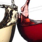 espumante-vinho